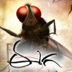 SS Rajamouli Eega First Look Wallpapers