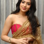 Nikesha Patel Hot in Saree Stills