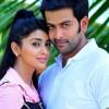 Raja Pokkiri Raja Movie Stills Mammootty Prithviraj Shriya Saran