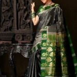 Sana Khan Silk Saree Photo Shoot Stills