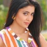 Shriya Saran New Stills