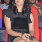 Actress Suja @ Nagavalli Audio Release