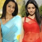 Bodyguard Trisha Hot Saree Stills
