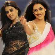 Genelia Hot Saree Pics