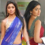 Shriya Saran Hot Saree Pics