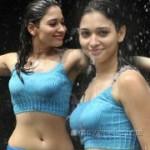 Racha Tamanna Hot Stills