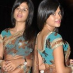 Shraddha Das Transparent Saree Stills