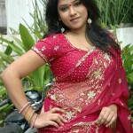 Jyothi Hot in Saree Stills