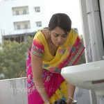 Apartment Movie Nikitha Hot Pictures