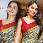 Andrea in Saree Photos