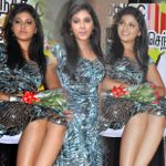 Anjali Hot at Kalakalappu Audio Launch