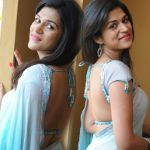 Shraddha Das Hot in Saree Stills