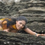 Sunaina hot photo gallery