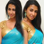 Gayatri Iyer Hot in Saree Stills