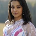 Trisha in White Saree Hot Pics