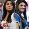 CCL 3 Final Telugu Warriors Vs Karnataka Bulldozers Match Photos
