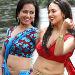 Sana Khan Hot Stills in Gajjala Gurram