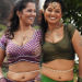 Gayathri Hot in Nathikal Nanaivathillai