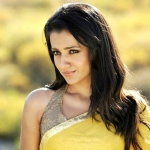 Trisha's Mohini Movie Details