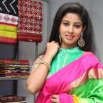 Pavani launches Pochampally IKAT Art Mela at Kushaiguda
