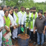 Tollywood Celebrities Participate in Haritha Haram Program