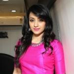 Trisha's Malayalam film with Nivin Pauly
