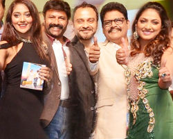 Jai Simha Audio Release Function