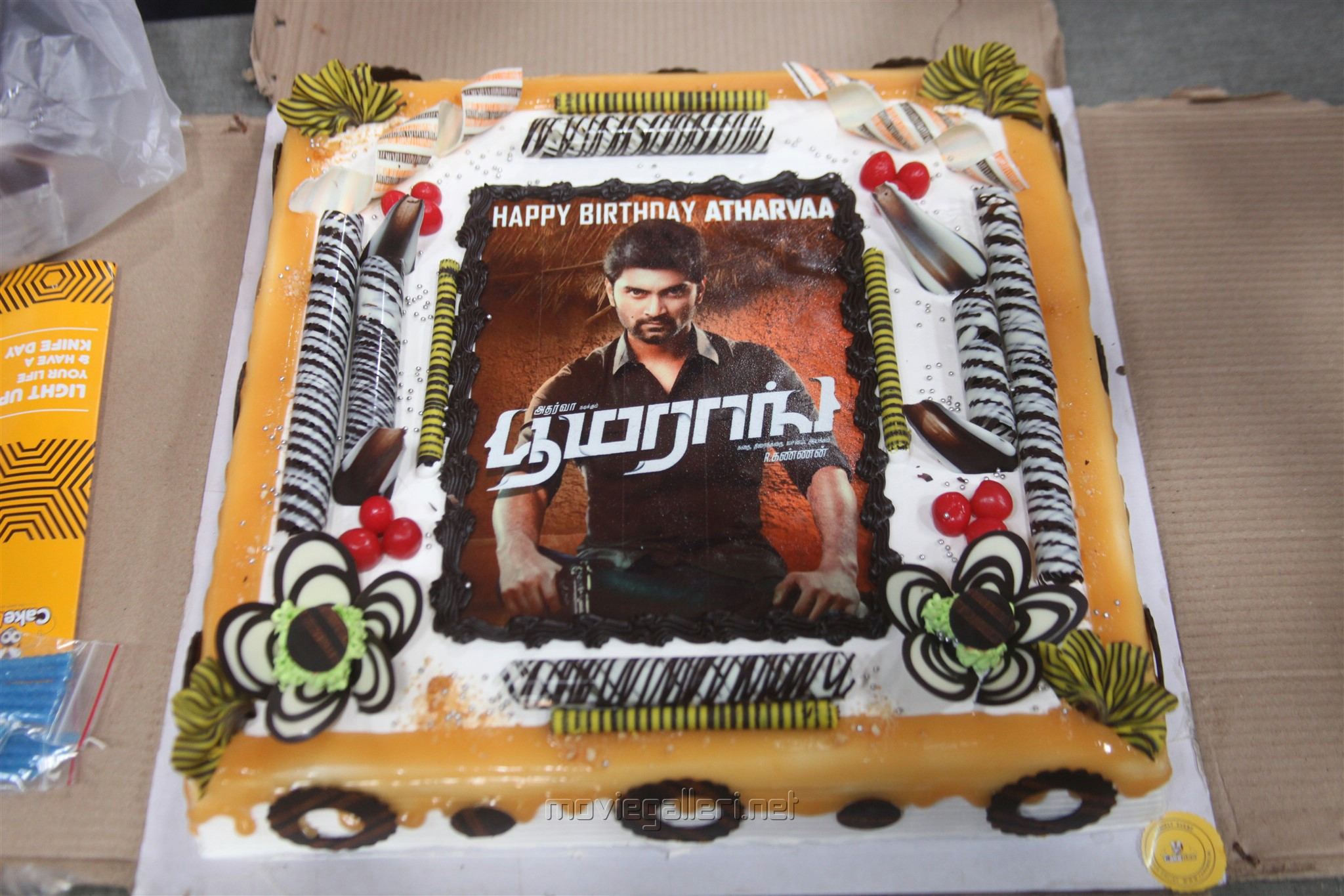 Actor Atharva celebrated his birth day in the sets of Boomerang