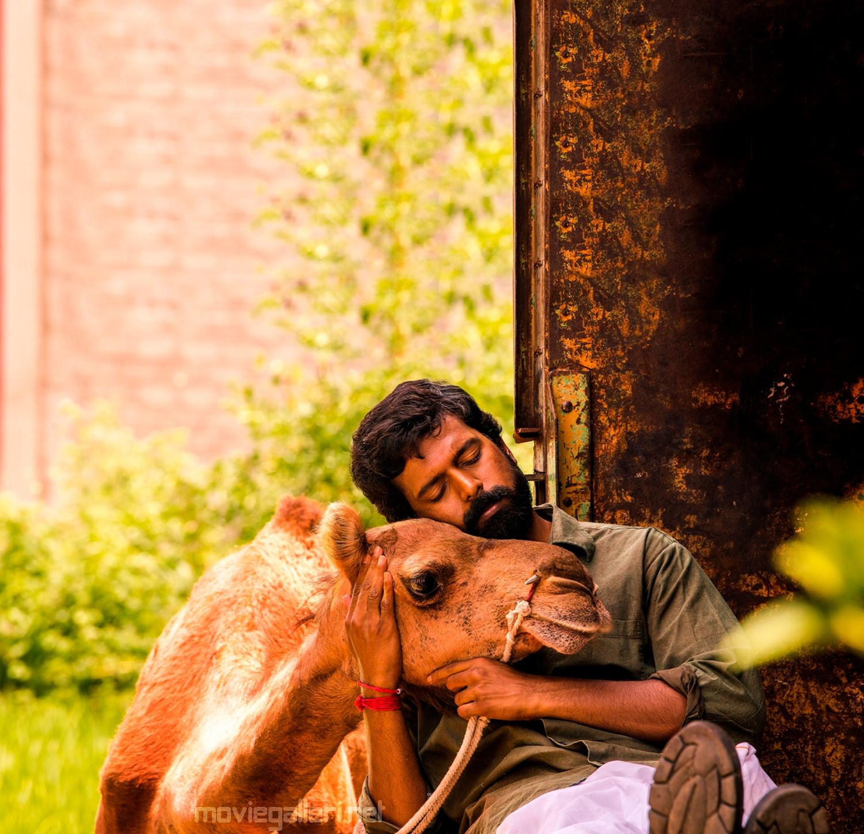 Bakrid Vikranth Movie HD Images