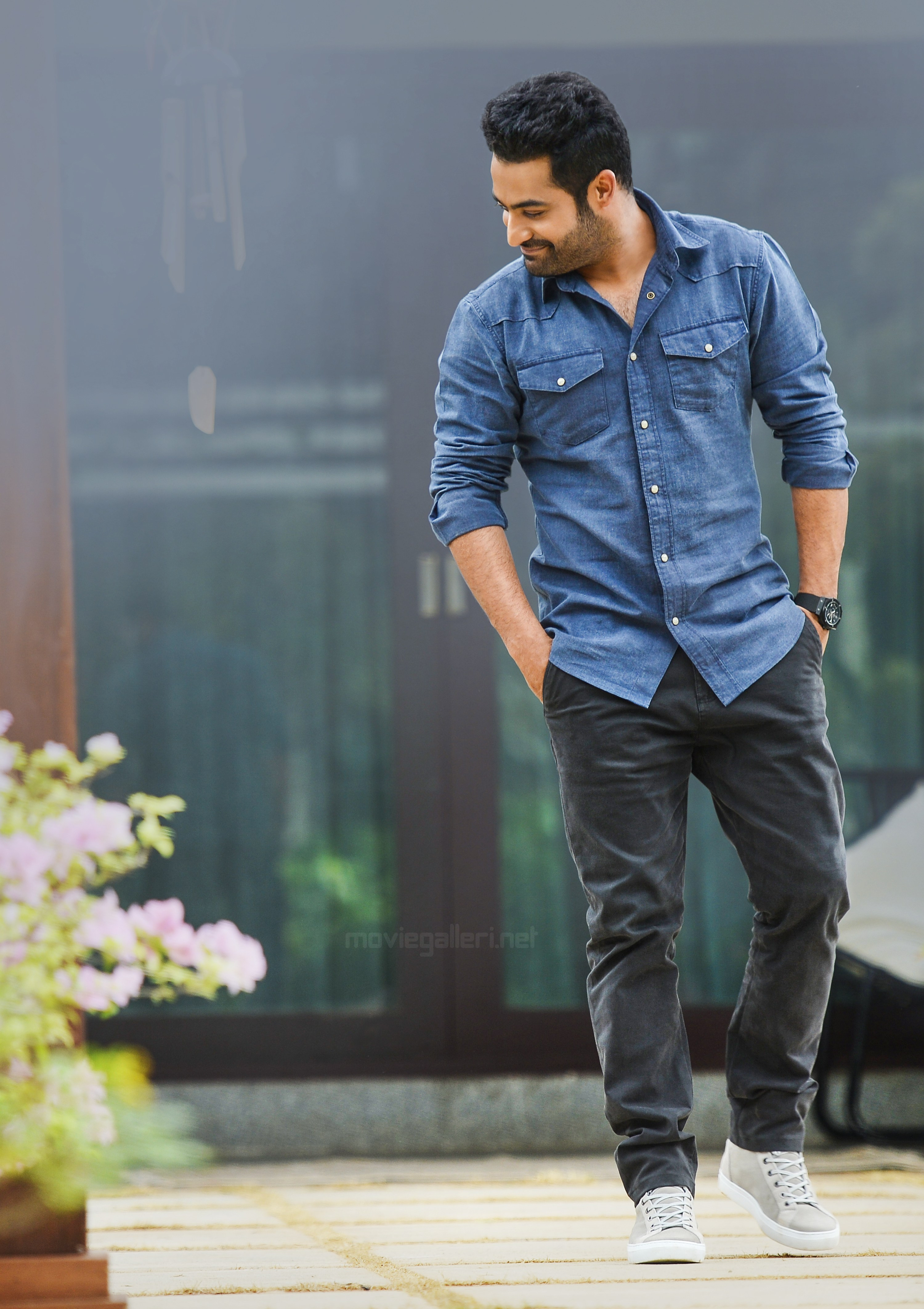 Aravinda Sametha Jr NTR HD Image