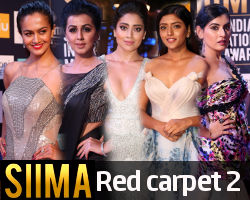 SIIMA 2018 Red Carpet (Day 2) Photos