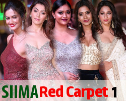 SIIMA Awards 2018 Red Carpet Day 1