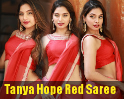 Tanya Hope Red Saree Photos @ Thadam Audio Launch