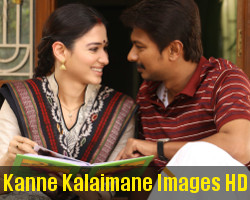 Udhayanidhi Stalin Tamanna Kanne Kalaimane Movie Images HD